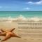 The Starfish Shore Ketubah